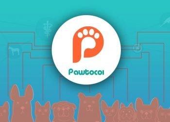 Pawtocol