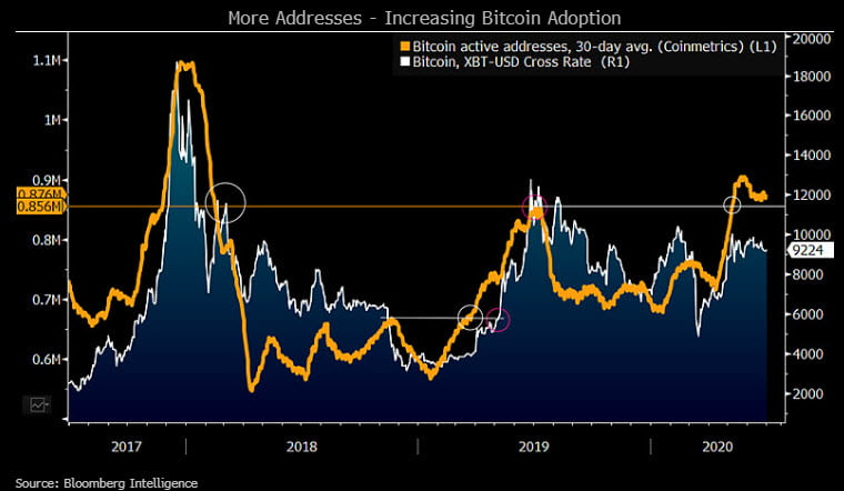Bloomberg Report: Active Bitcoin (BTC) Addresses Point Towards $12,000 11
