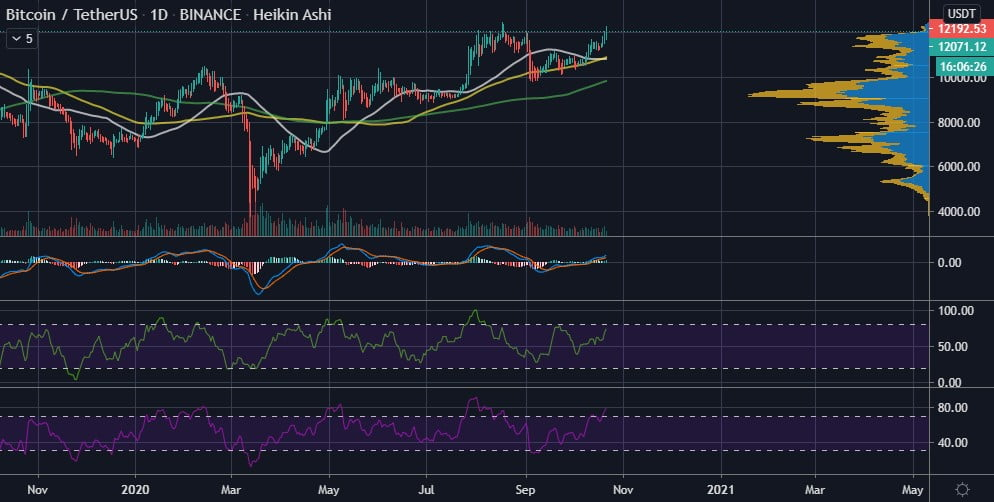 Bitcoin Addresses in Profit hit new ATH of 30.4M as BTC Reclaims $12k 3