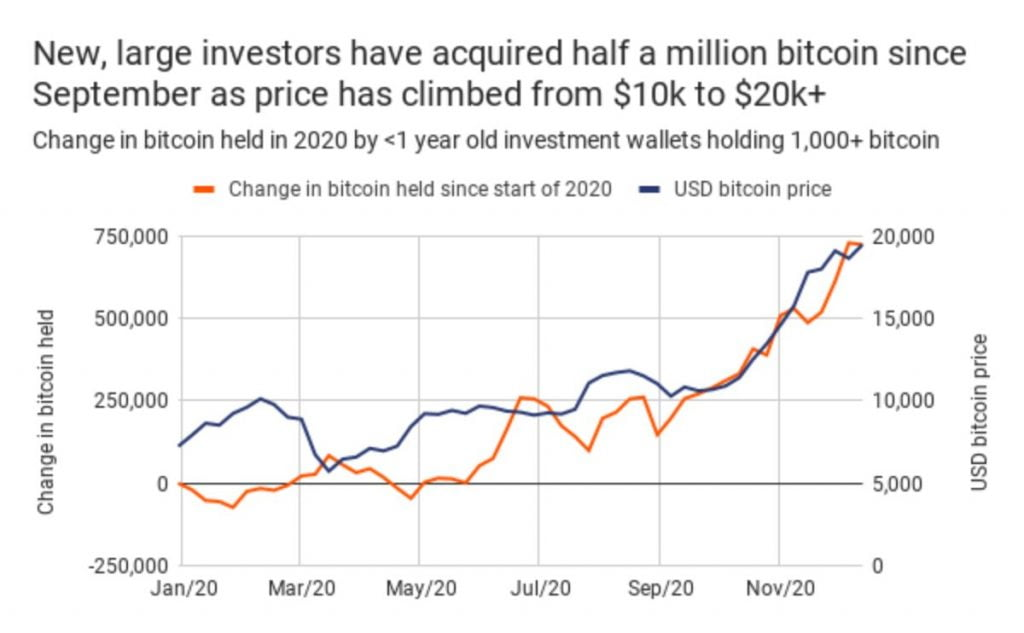 Bitcoin Whales Have Accumulated 500,000 BTC Since September 13