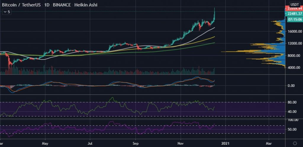 Bitcoin has a 50% Chance at Surpassing $30k in 2021 - BTC Analyst 16
