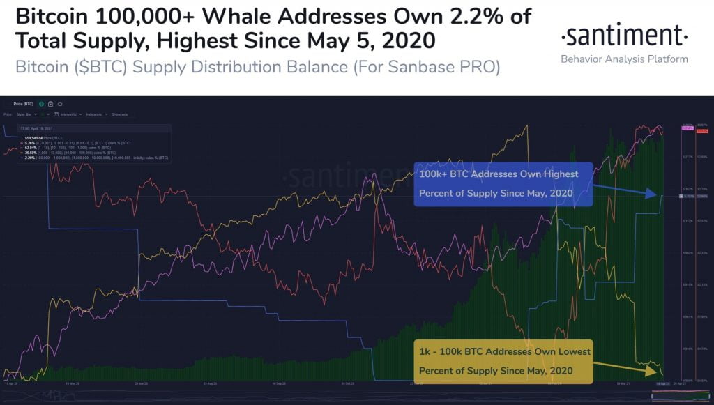 Bitcoin Whales Holding 100k+ BTC Increase to an 11 Month High 16