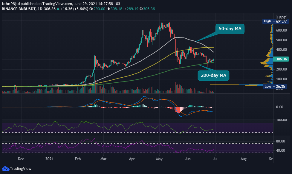 Binance Coin's 200-day MA Holds, as 16th BNB Coin Burn Beckons 17
