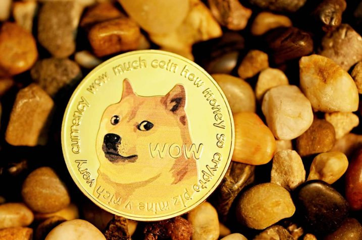 Dogecoin (DOGE) Has Corrected by 71% Since Elon Musk's SNL Peak Value 19
