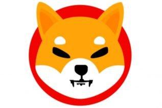 Shiba Inu Outperformed DOGE in Q2, Posting 11,566,501% in Returns 16