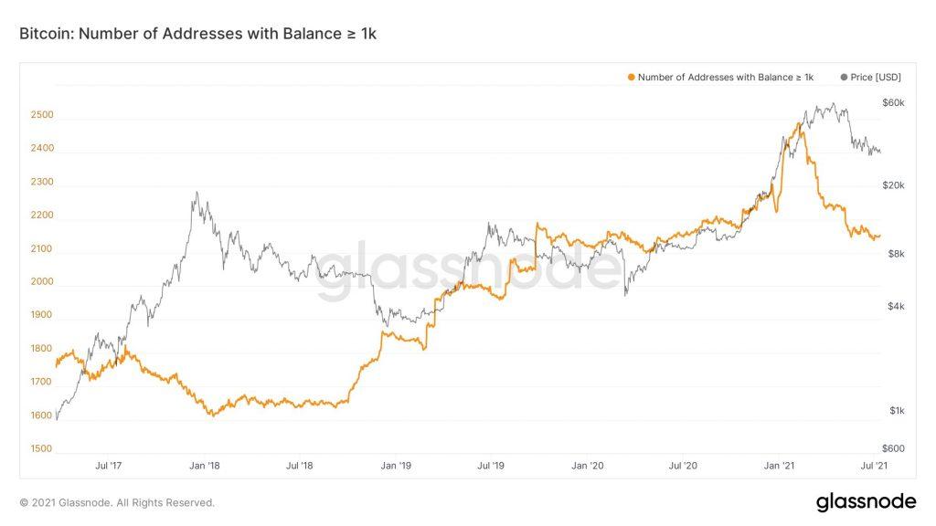 Bitcoin's Addresses Growth and Metrics 'Look Terrible' - BTC Analyst 18