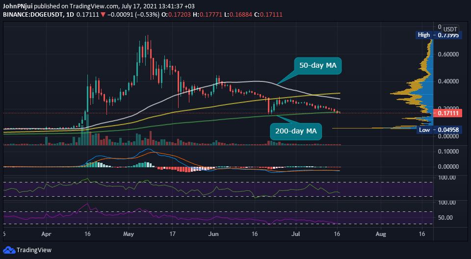 Dogecoin (DOGE) Rose by 366% in Q2, Outperforming the top 5 Cryptos 18