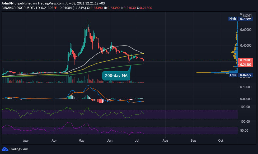Dogecoin's 200-day MA Holds the Key to DOGE Retaining a Top 10 Ranking 18