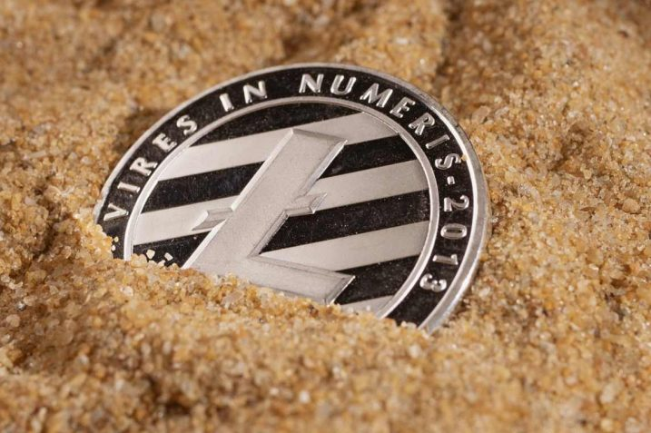 Litecoin Whales Have Increased Their Holdings by 270k LTC in July 15