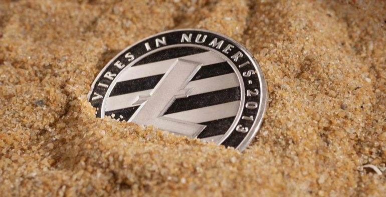 Litecoin Whales Have Increased Their Holdings by 270k LTC in July 3